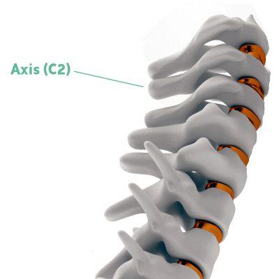 Coluna Cervical C2