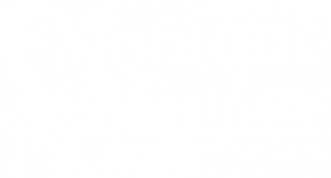 logo Monique Meinesz Quiropraxia